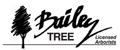 Bailey Tree, Logo